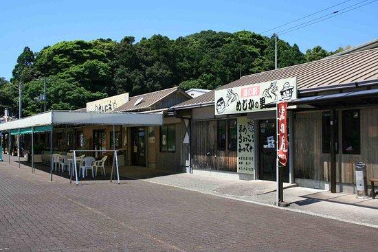 Tosashimizu Mejika Village Michi-no-Eki