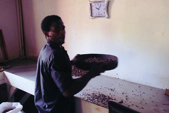 Belmont, Grenada: Shaking the cocoa beans