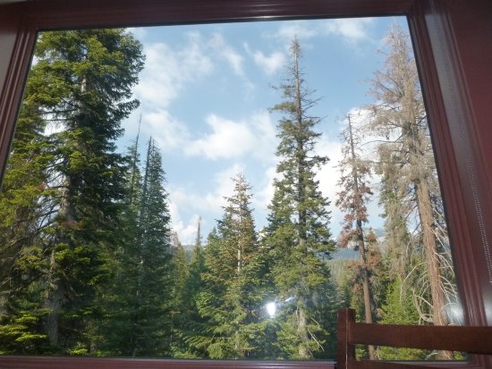 Wuksachi Lodge: View from the Peaks dining room