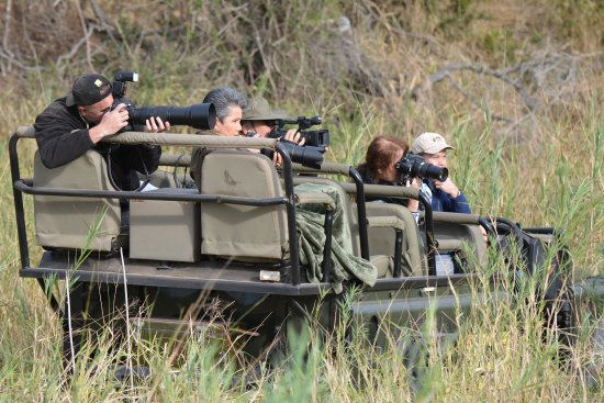 Mala Mala Private Game Reserve, South Africa: land rovers go everywhere
