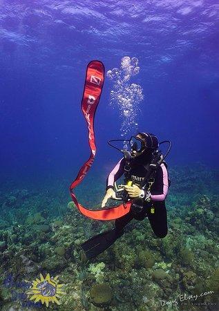 Sandy Bay, Honduras: safety stop
