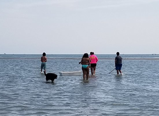 Hatteras, Caroline du Nord : Family collecting clams