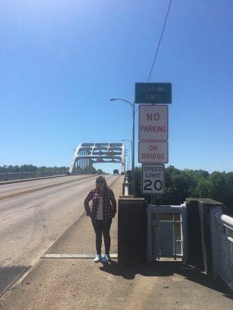 Selma, AL: photo1.jpg