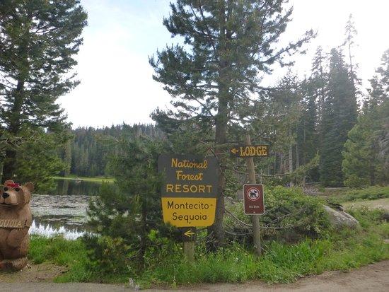 Montecito Sequoia Lodge & Summer Family Camp張圖片