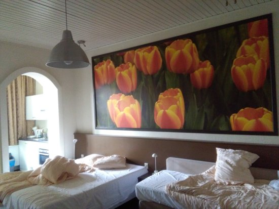 Hotel Sebel: IMG_20170412_100629_large.jpg