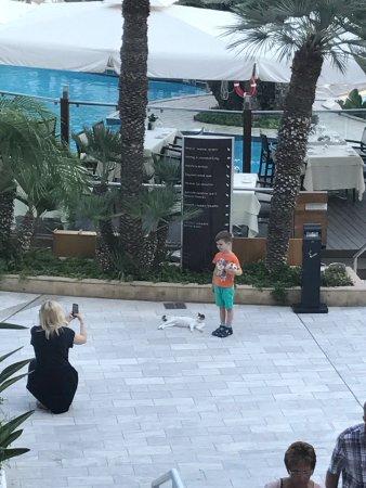 Mediterranean Beach Hotel: photo0.jpg