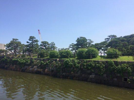 สวนฮามะริคิว: 夏天的公园