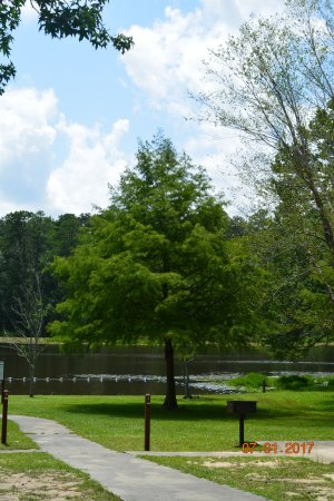 Barnwell State Park Blackville 2020 All You Need To