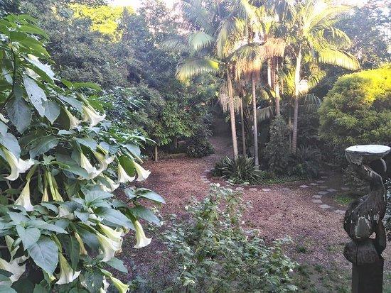 North Sydney, Australia: En Clark Park descendimos unas escaleras y descubrimos un hermoso parque muy bien cuidado