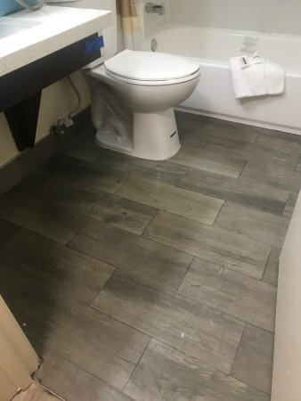 Dry Ridge, KY: Bathroom & wet floors with dirt