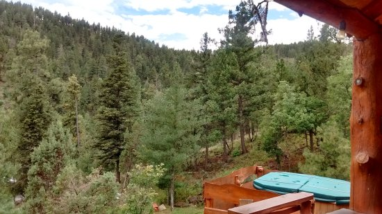 Alto, NM: beautiful view from Sam's cabin
