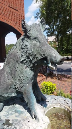 Wallace, NC: The boar who spits