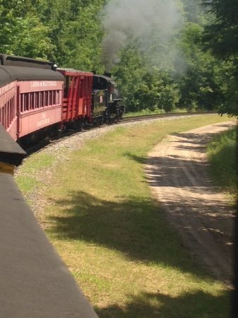 Lumberjack Steam Train: The view from the caboose.