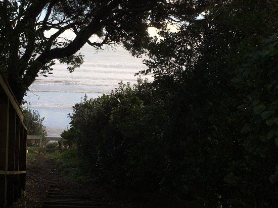 Oakura, Nueva Zelanda: photo9.jpg