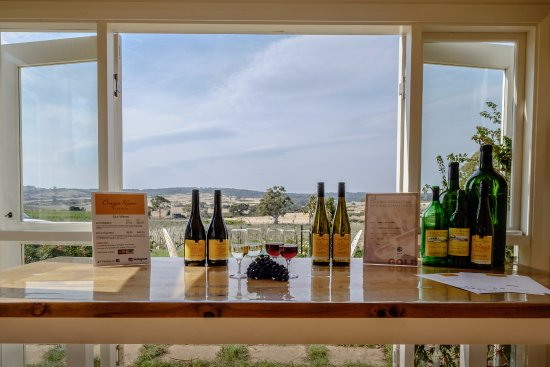 Cranbrook, Australien: Current tasting area within our home