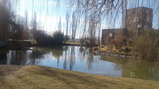 Luján de Cuyo, Argentina: Vista del parque y Bodega