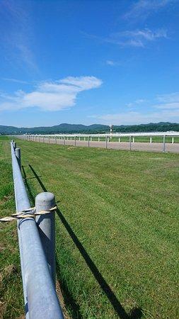 Urakawa-cho, Japón: ダートコース直線も長い