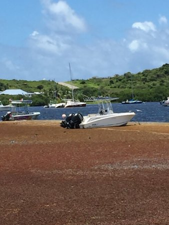 Oyster Pond, Saint-Martin : photo2.jpg