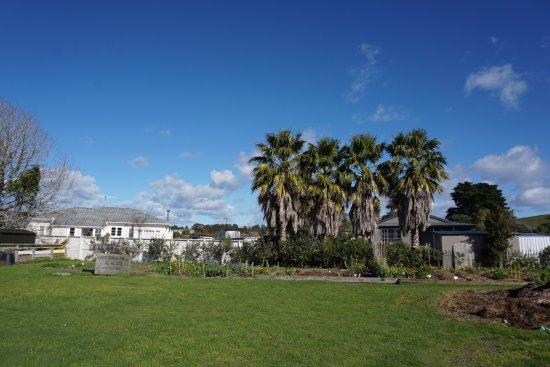Matakana, New Zealand: Community garden