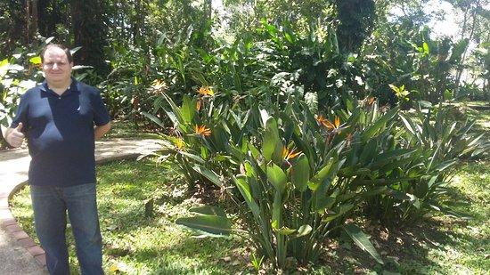 Jardin botanico lankester cartago costa rica top tips for Jardin lankester