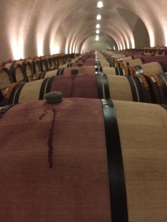 Hamel Family Wines: photo6.jpg
