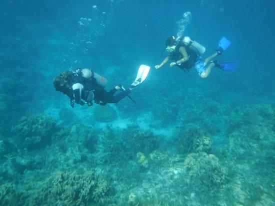 Sandy Bay, Honduras: 2017_0718_04535300_large.jpg