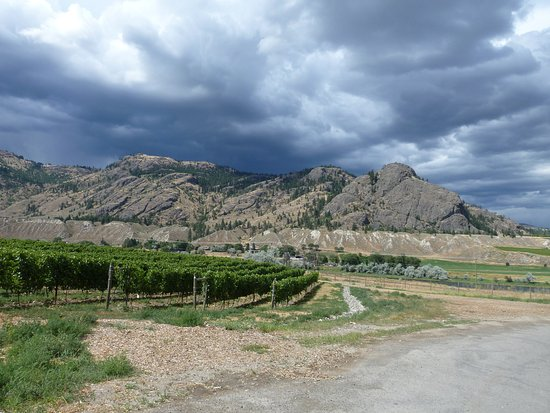 Kamloops, Kanada: Wine route_1