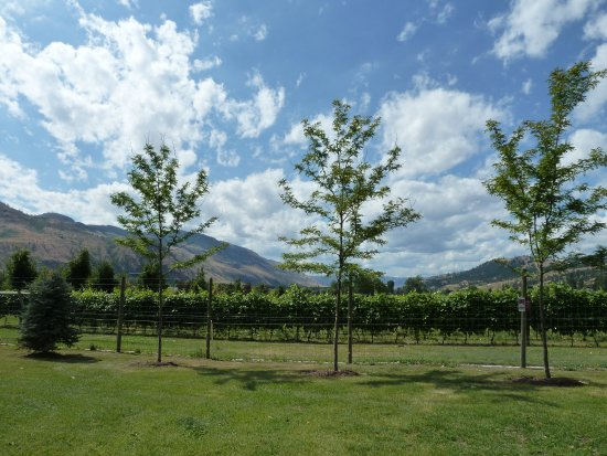 Kamloops, Kanada: Wine route_2