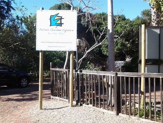 Deserto, África do Sul: Lush gardens