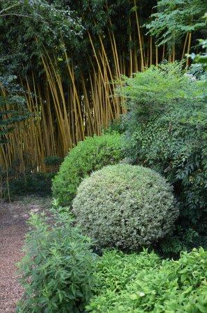 Le Buisson-de-Cadouin, Francia: Magnifique jardin