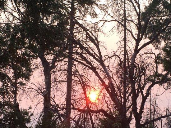 Groveland, Kaliforniya: photo0.jpg