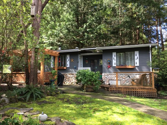 Isla Galiano, Canadá: .....nestled is a wooded grove of towering Arbutus trees