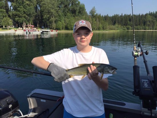 Whitefish, MT: Catch'n'em left, right and center.  13 fish total.