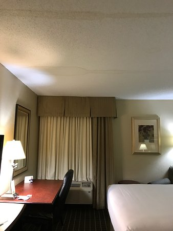 South Boston, Βιρτζίνια: Someone posted mild pictures from 2013.  This stay was July 21,2017 and hotel room 219 was full