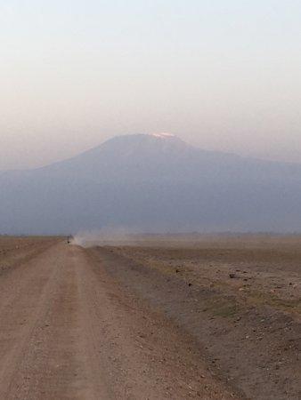 Amboseli National Park, เคนยา: photo0.jpg