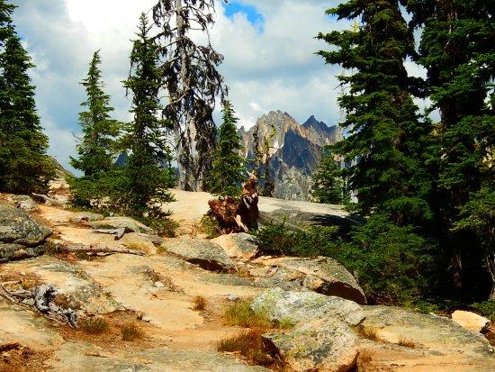 Национальный парк Норт-Касейдз, Вашингтон: along the trail