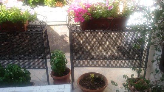 La Veranda Fiorita: TA_IMG_20170722_093751_large.jpg