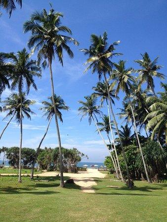 Wunderbar Beach Club Hotel : photo0.jpg