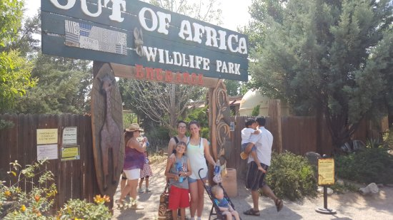 Camp Verde, AZ: Out of this world fun!