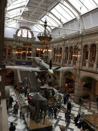 Kelvingrove Art Gallery and Museum: photo1.jpg
