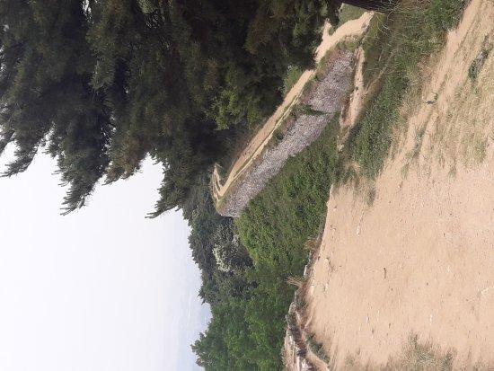 Cheongju, South Korea: 20170620_123905_large.jpg