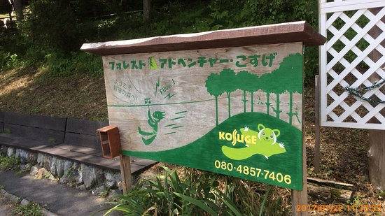 Kosuge-mura, ญี่ปุ่น: photo5.jpg