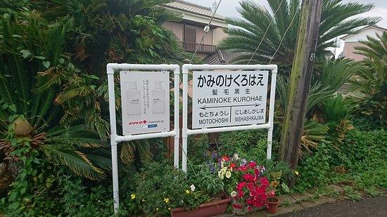 Choshi Dentetsu: DSC_1622_large.jpg