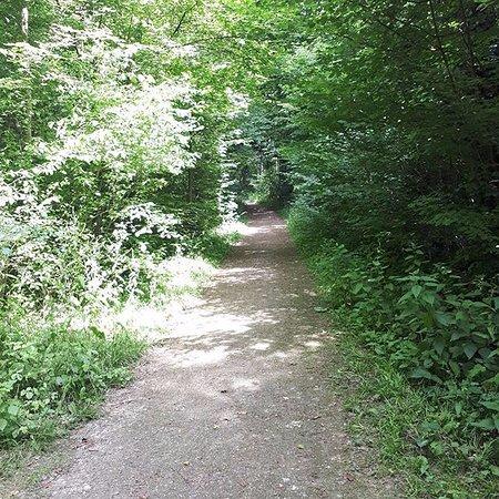 Sevran, Francia: L'un des sentiers du parc