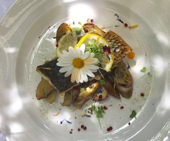 Küsnacht, Schweiz: Fisch aromatisch auf Aubergines
