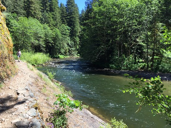 Welches, OR: Salmon River Trail (early part of the trail)