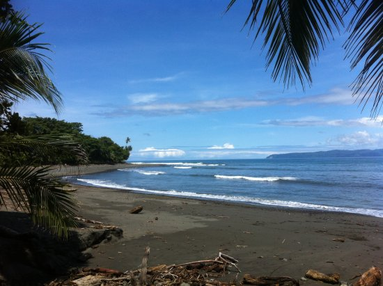 Pavones, Costa Rica: 20m walking to the beach and to the 2nd longest wave
