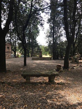 Fattoria del Colle - Agriturismo : photo3.jpg