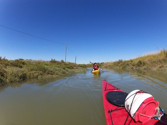 Saint-Pierre-d'Oleron, Francia: Découverte des marais