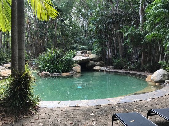 Kewarra Beach, Australia: The pool in the rainforest